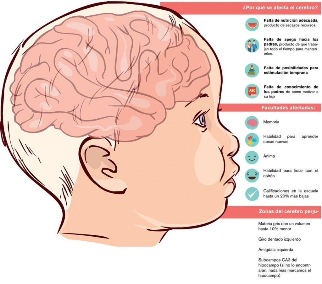 Las Neuronas Cuidate Fisioterapia y Estetica 10