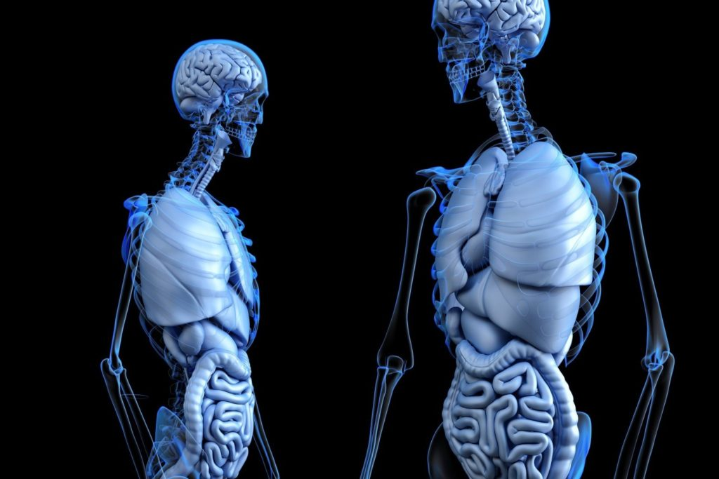Tratamiento Osteopatia Visceral Cuidate Fisioterapia y Estetica 13